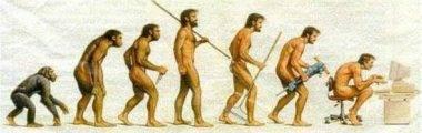 Conceito e evolução