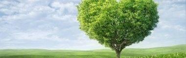conceito-ecologia