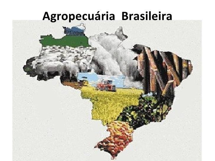 Agropecuária no Brasil