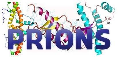 Príons: proteínas anormais provocam doenças